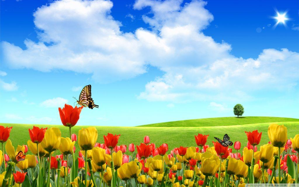 dreamscape_spring-wallpaper-1680x1050