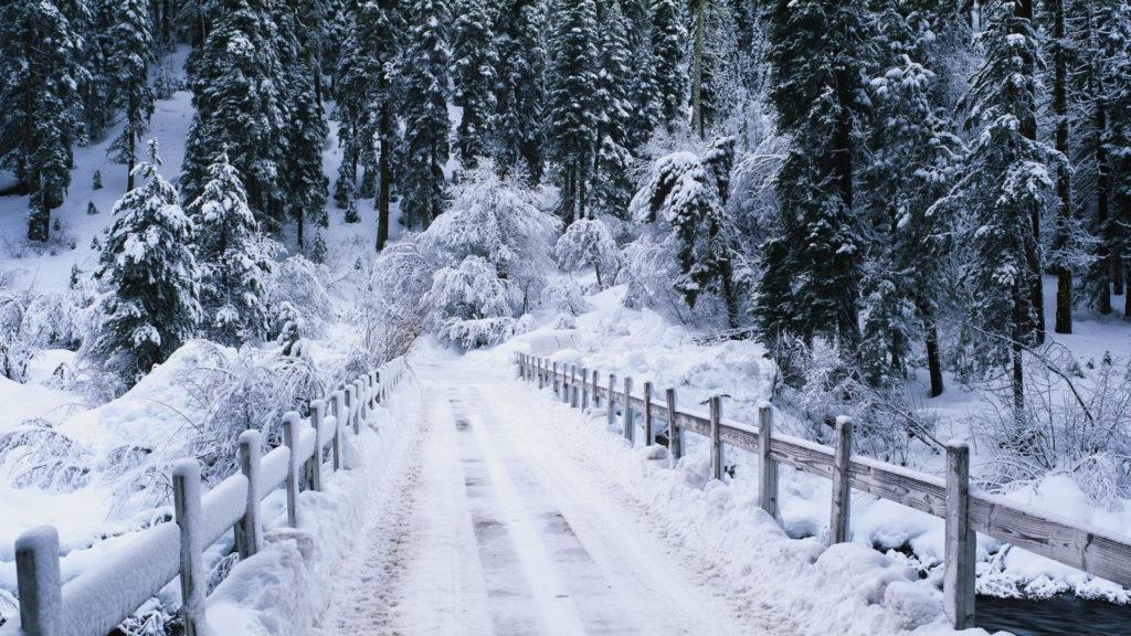 Snowy-bridge
