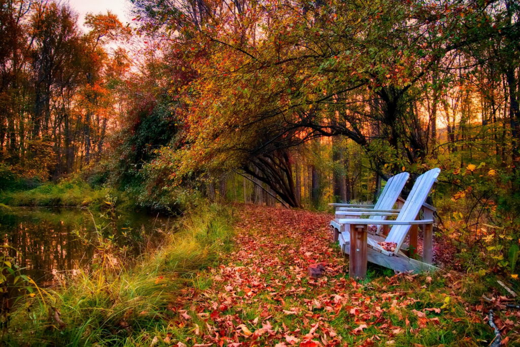 blue-benches