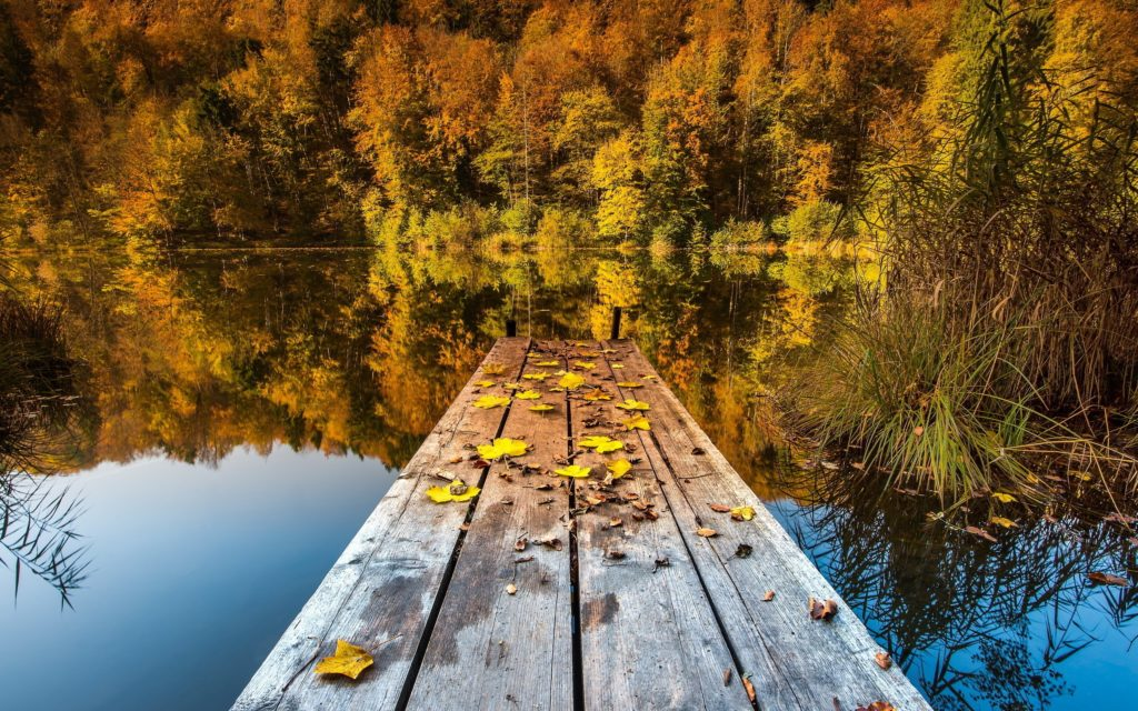 small-pier-at-the-autumn-lake